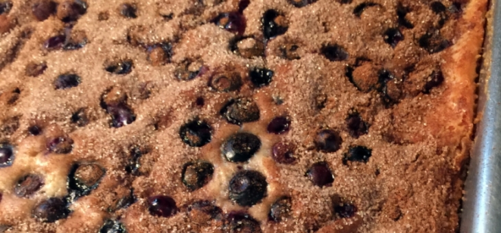 Susan Blueberry Cake