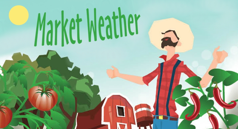 Market Weather