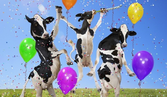 PartyCows